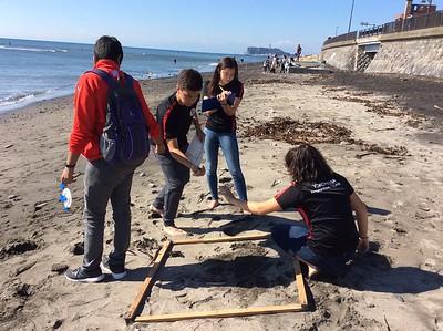 Gr. 10 I&S Inamuragasaki 2017 Beach Study