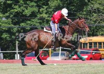 Tinicum Polo:  5/19/2012