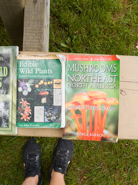 Burntcoat Head foraging books.jpg
