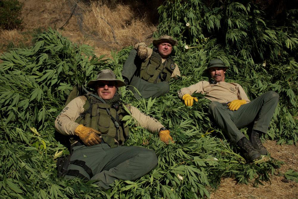 """. \""""Pot Cops\"""" at rest with a haul."""
