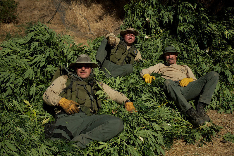 ". ""Pot Cops\"" at rest with a haul."