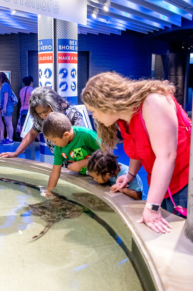 Declan & Zay: National Aquarium