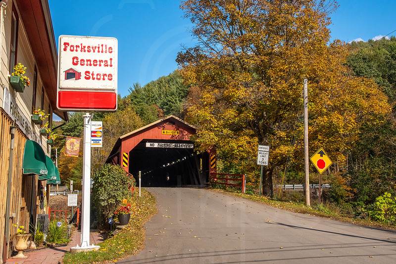 Forksville Covered Bridge-DSC_7700.jpg