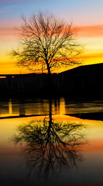 IMG_5438_edited_edited.jpg