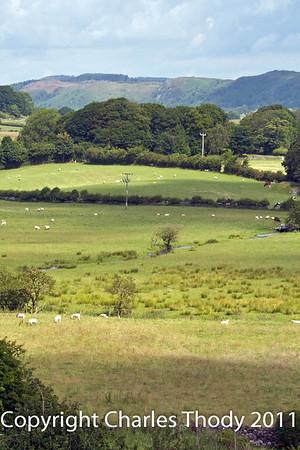 Lake District July 2011