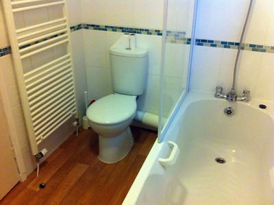 2012-Buckingham Bathroom