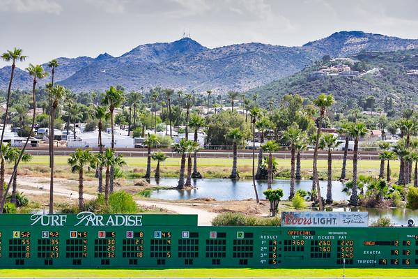 Turf Paradise Phoenix 14 October 2019