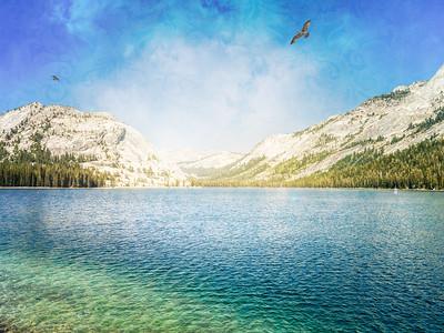 Yosemite Prints