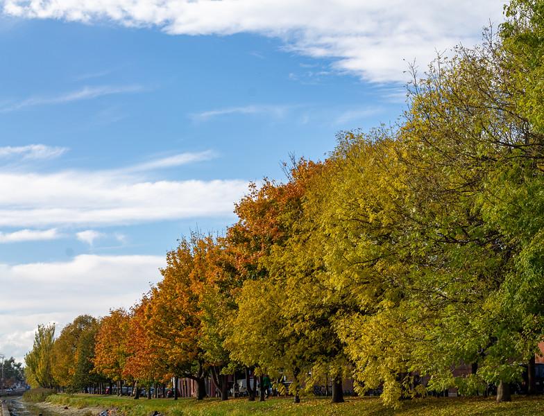 Autumnal Triangle