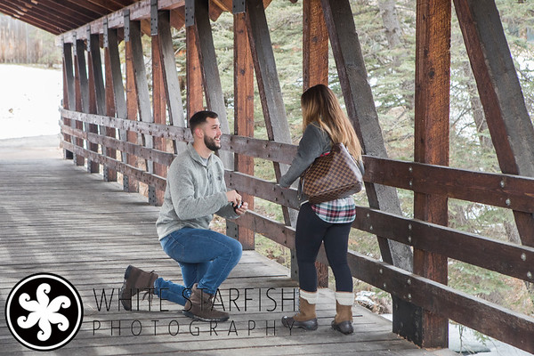 Vail Wedding Proposal - Gore Creek Covered Bridge - Cardona