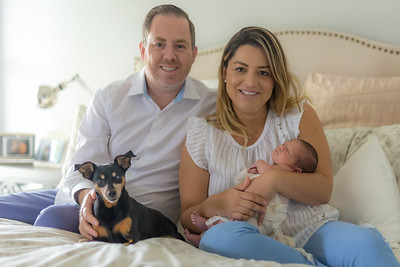 Ari's Family