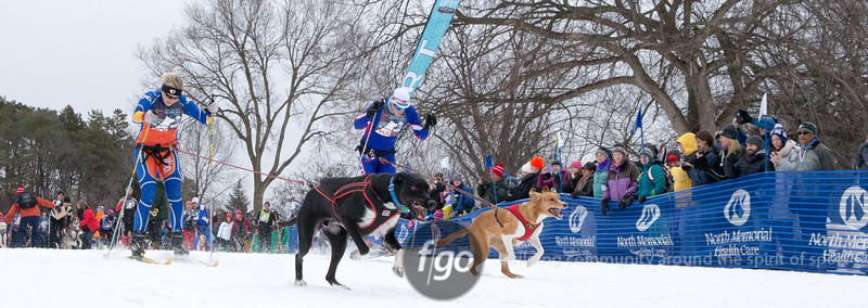 1-31-15 Loppet Saturday - Chuck & Don's Skijoring Loppet & One_Dog National Championship