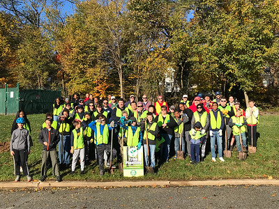 11.3.18 Tree Planting at Spring Grove with Catonsville Tree Canopy Project