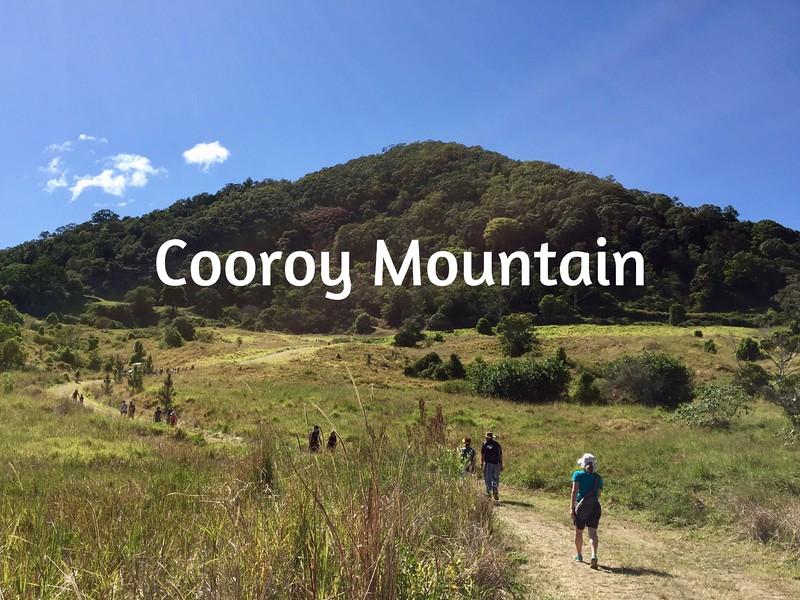 Cooroy Mountain.jpg