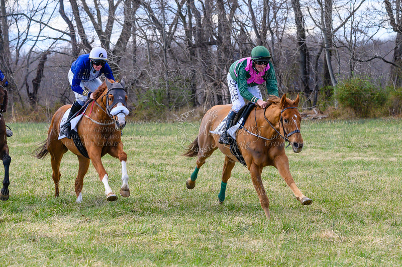 Race 7 The Fredrick Prince Memorial