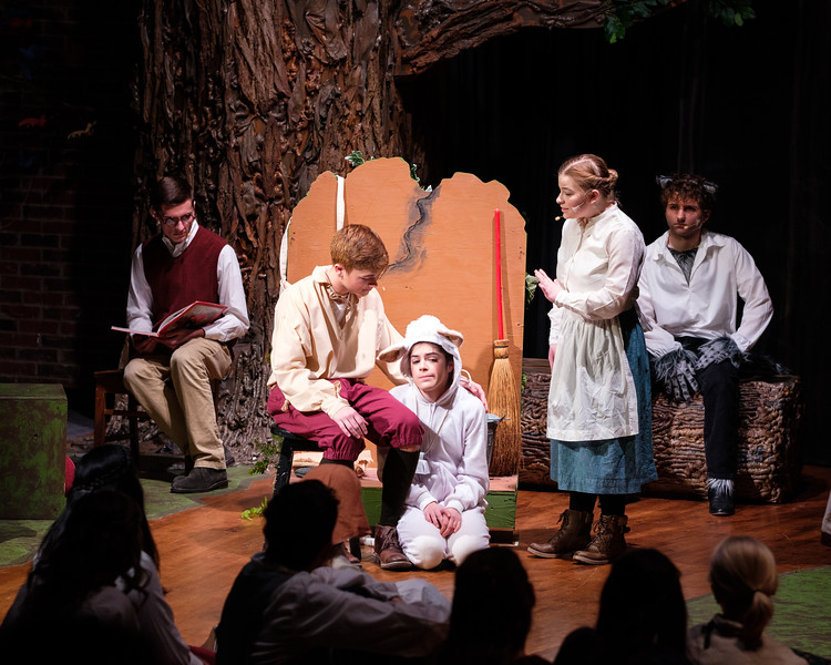 2018-03 Into the Woods Performance 1071.jpg