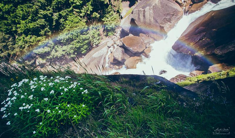 08_10-13_2017_Yosemite_Vernalrainbow_02.jpg