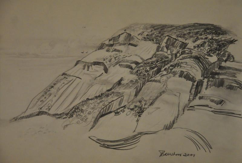 Graphite Study of a Rocky Mountain Ala prima, Plein air 9X6