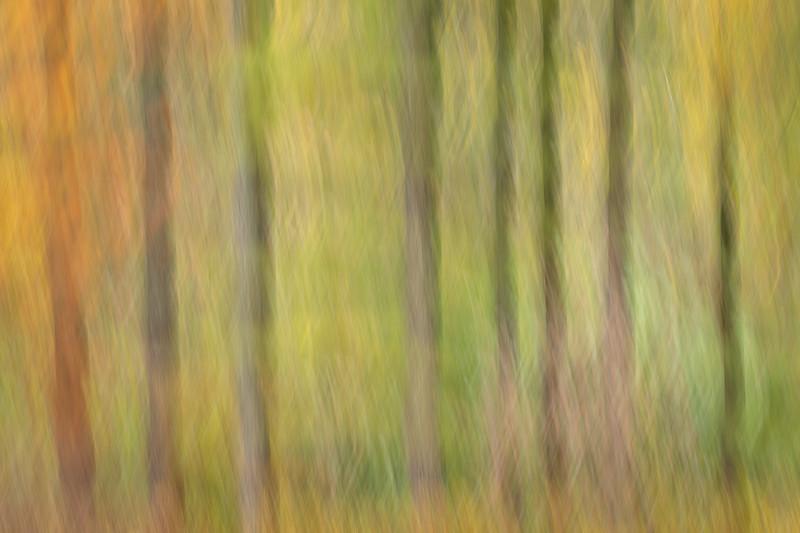 untitled-4260.jpg