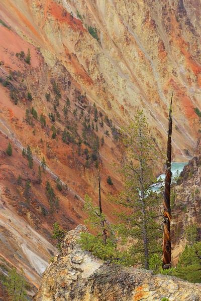 Yellowstone 079.JPG