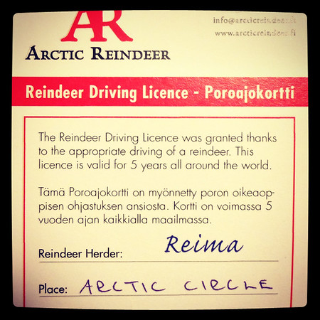 Officially Licensed Reindeer Driver