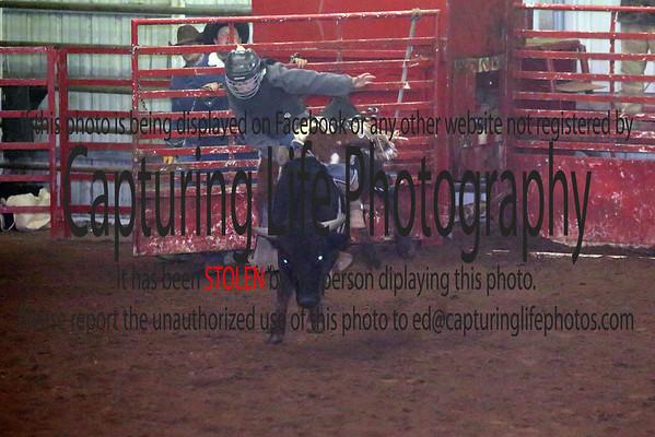 Wednesday Rodeo