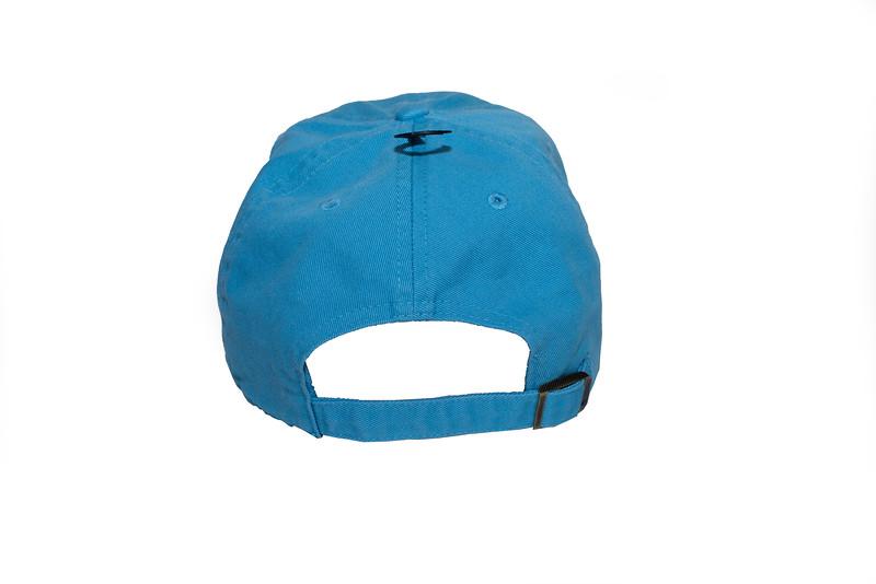 H-back of hat.jpg