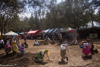 Bay Area Renaissance Festival 2014