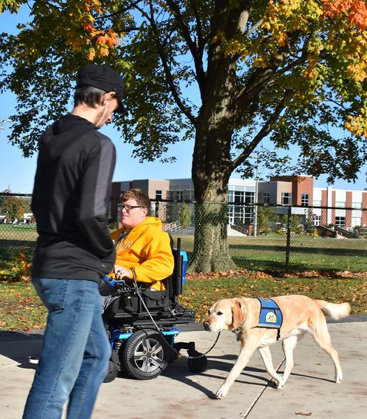 Wheelchair.ServiceDog.jpg