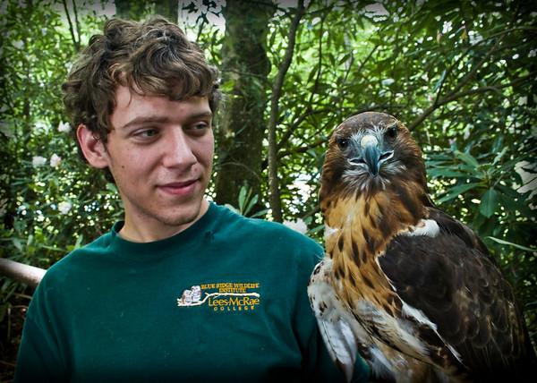 Blue Ridge Wildlife Institute