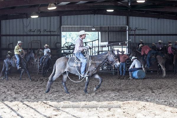 Friday Mule Roping Clinic