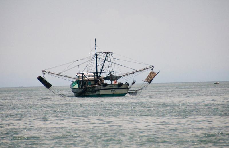 Net fishing Pacific Ocean .jpg