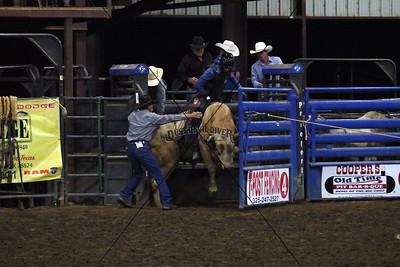 Saturday Night Bull Riding