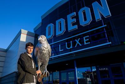11/12/19 ODEON Luxe Nuneaton