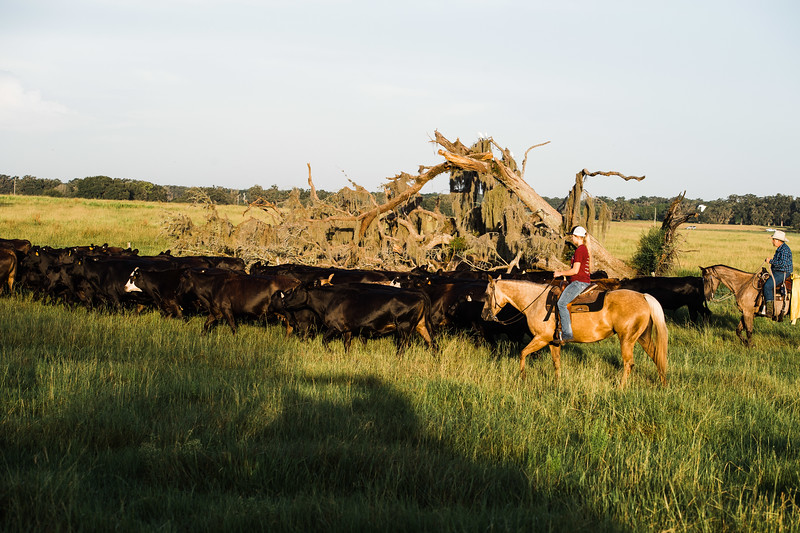 Breely Barthle Ranch COLOR (126 of 306).jpg