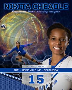 FSU volleyball 2015