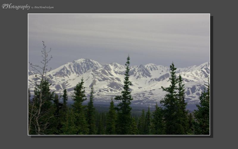 My Alaska 12-08-056.jpg
