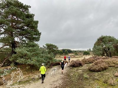 Den Treek Cani-Trail | 27-09-2020
