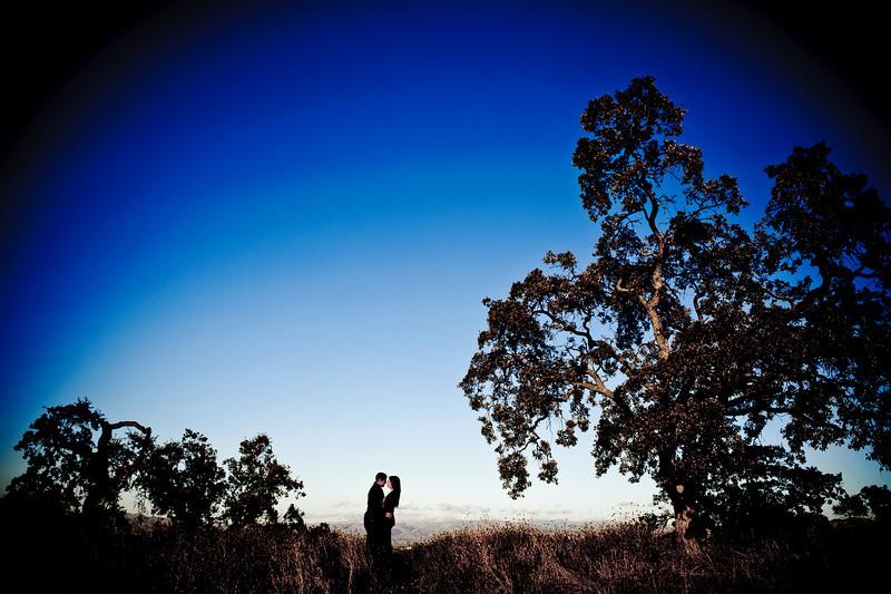 Joe and Christine (Engagement Photography, Belgatos Park, Los Gatos)