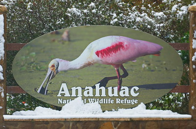 Anahuac Refuge with snow