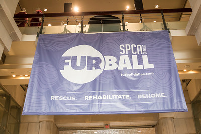 SPCA Fur Ball Kickoff Party
