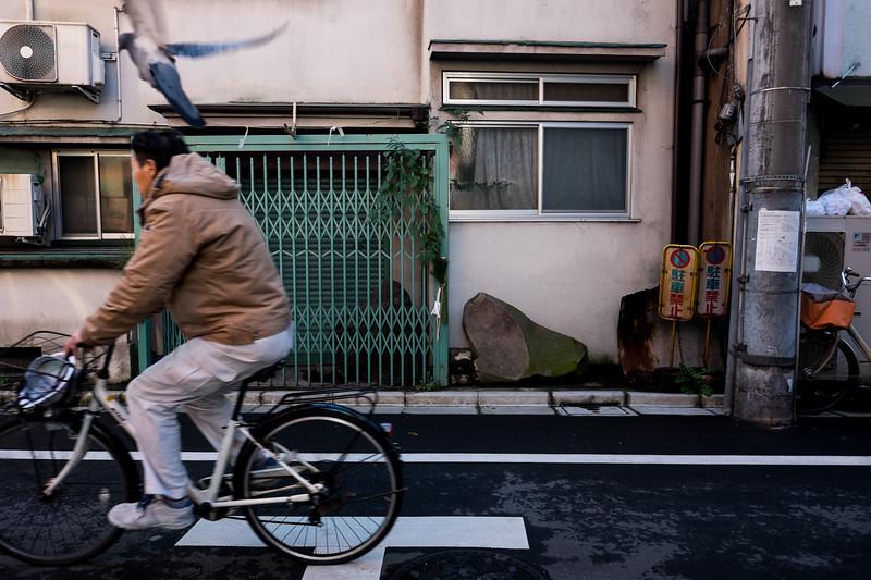 2019-12-21 Japan-568.jpg