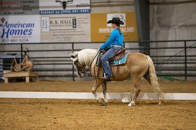 Horse 176