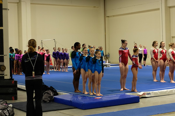 2018 Gymnastics Photos
