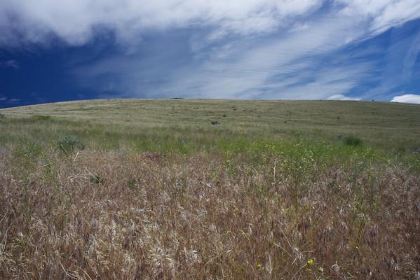 Yakima Skyline Ridge