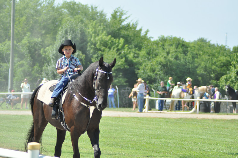 horseshow-sweetwater-0018.jpg