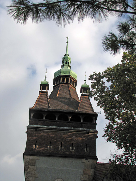 83-Vajdahunyad Castle. A very fanciful tower.