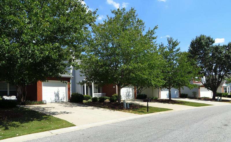 Avensong Milton Georgia Homes (18).JPG