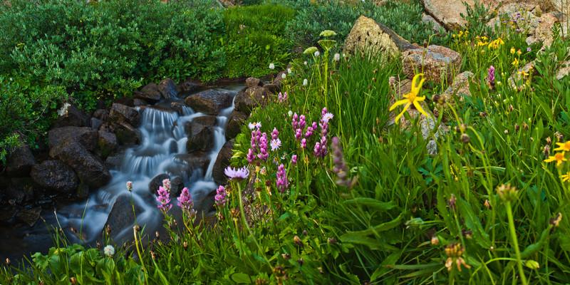 tmophoto_taylor creek summer waterfall.jpg