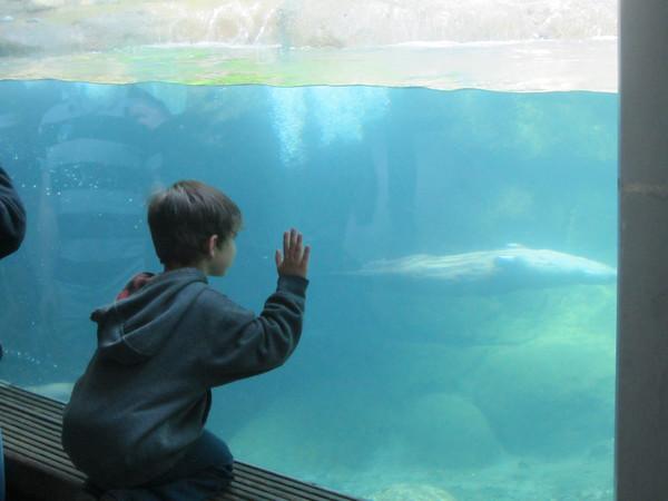 Zoo April 27 2012